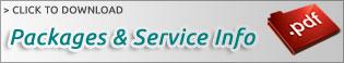 York Website Design Services Download PDF